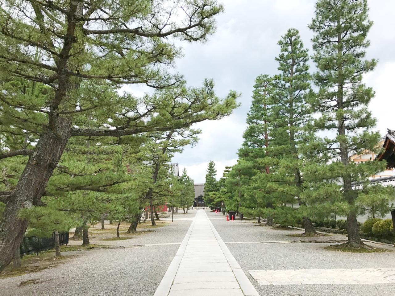 妙心寺の参道