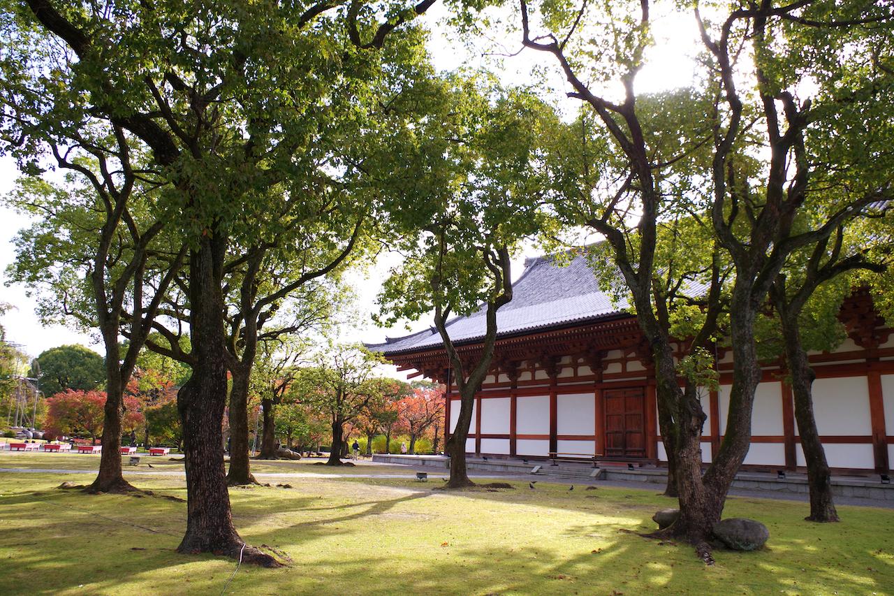 東寺境内の風景