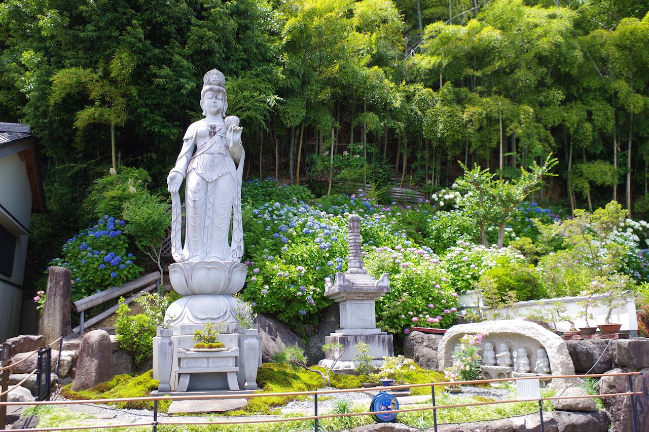 最福寺のあじさい