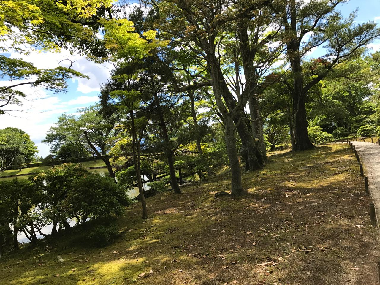 修学院離宮の木々と道