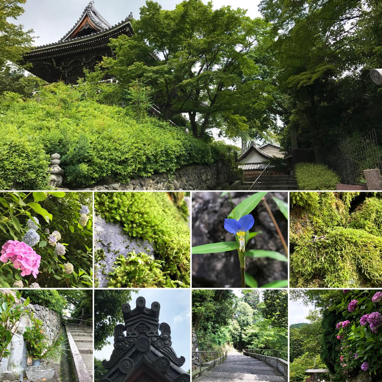善峯寺-駐車場付近の風景