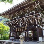 善峯寺は山を上がりつつ楽しむ大規模なお寺で紫陽花の名所