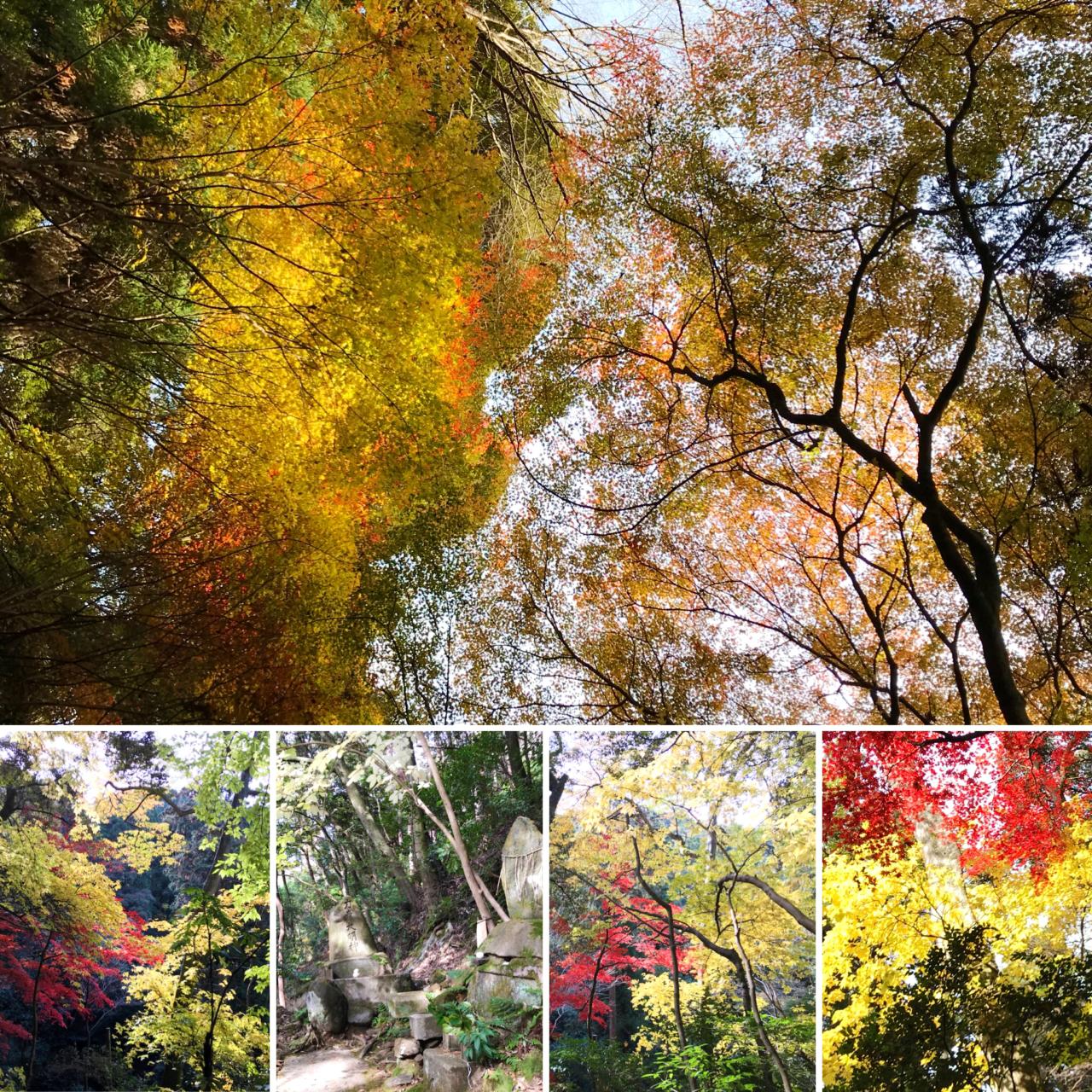 南禅寺奥の院の紅葉