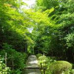 金地院(京都)の見所と歴史を金地院崇伝を中心に解説