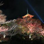 秋の京都、紅葉ライトアップ9選