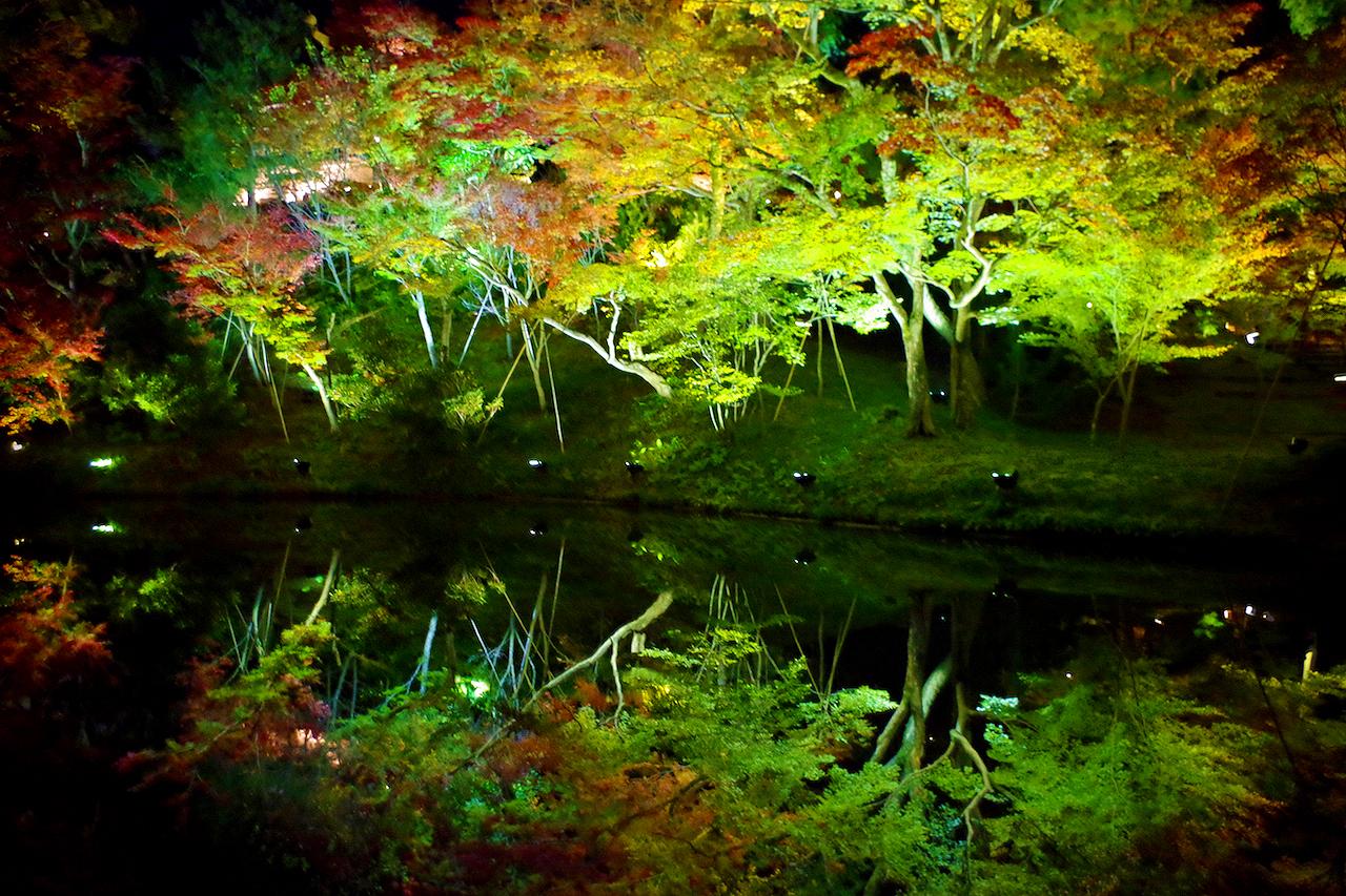 高台寺の水鏡の紅葉