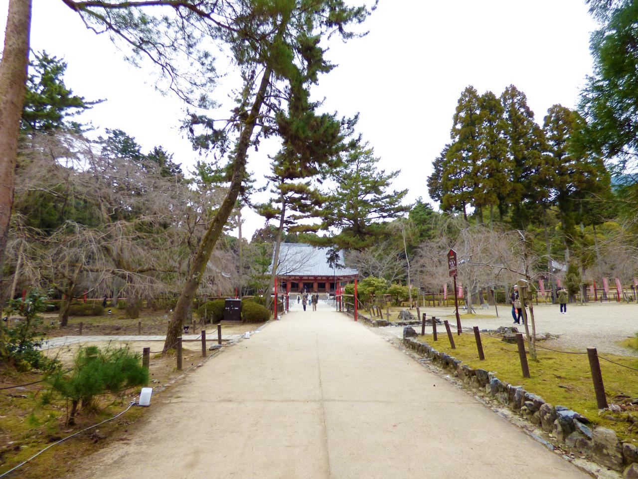 醍醐寺 境内