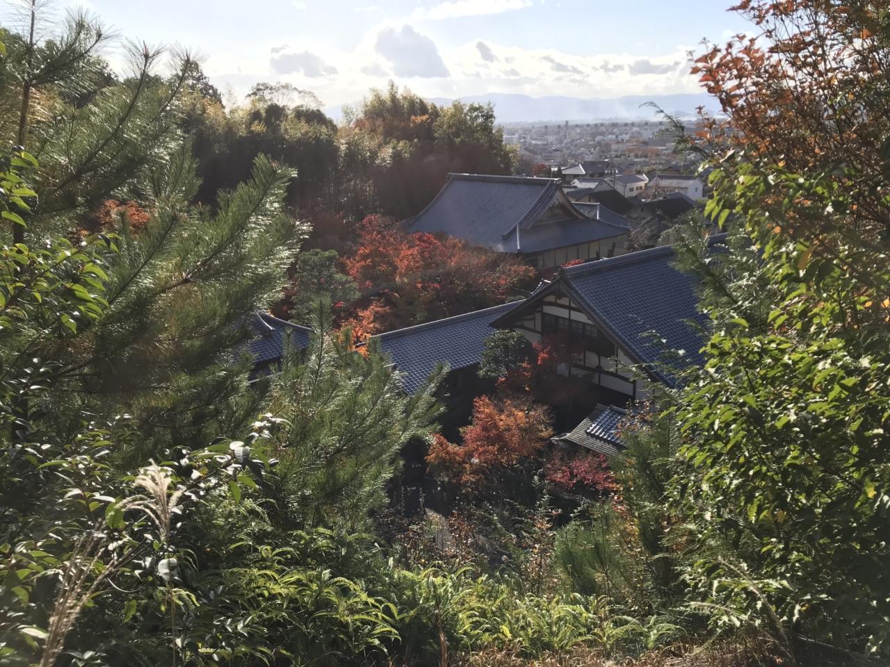 圓光寺の眺め