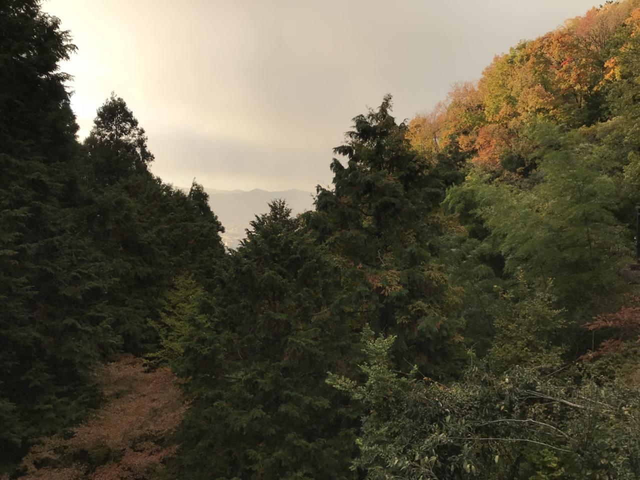 狸谷山不動院 本堂からの眺め