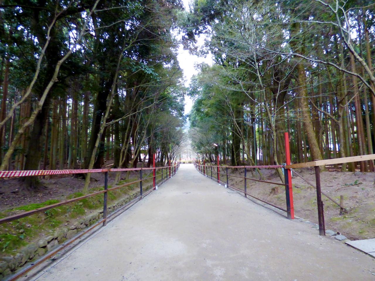 醍醐寺 通路