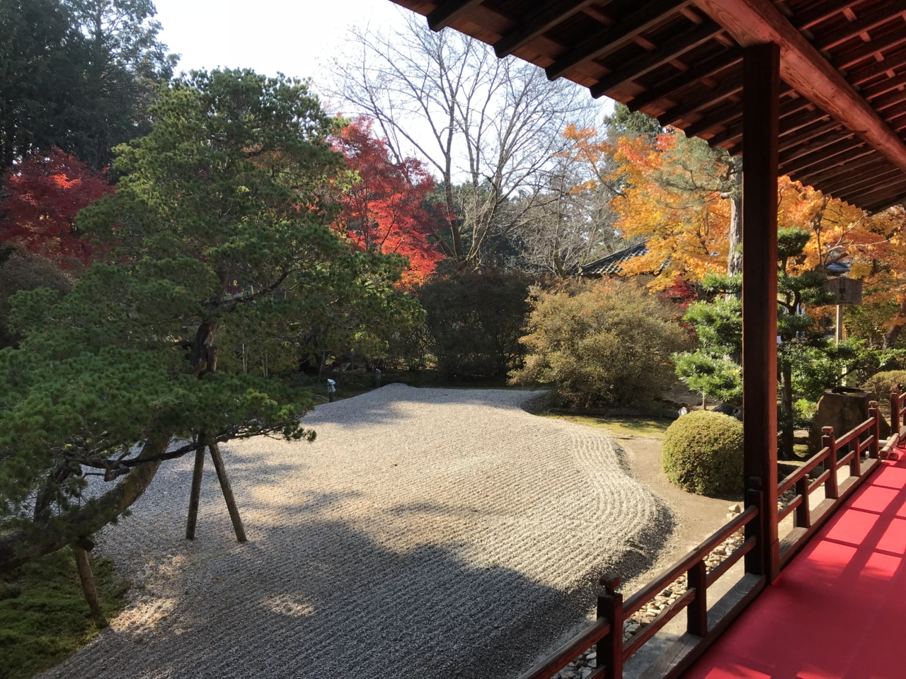 曼殊院の庭園