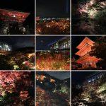 清水寺の歴史・見どころ・紅葉ライトアップを解説