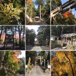 崇道神社(京都)の歴史と見どころをわかりやすく解説
