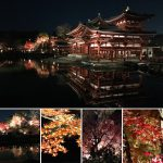 平等院鳳凰堂のライトアップ・歴史・見所を解説
