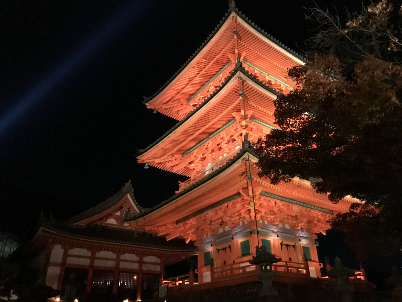 清水寺 紅葉 ライトアップ