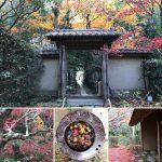 厭離庵は紅葉が美しい特別公開の観光スポット
