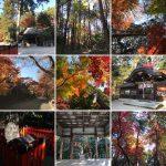鷺森神社は京都の紅葉の名所に囲まれた穴場スポット