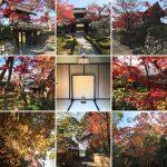 禅華院は修学院離宮側の小さなお寺で紅葉が美しいスポット