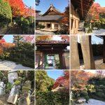 金福寺の紅葉や歴史・見どころを解説