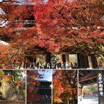 南禅寺の紅葉を楽しめる見どころ一覧