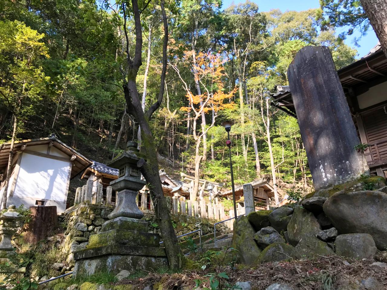 崇道神社の境内