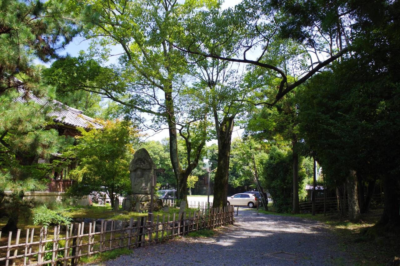 清凉寺の境内と駐車場