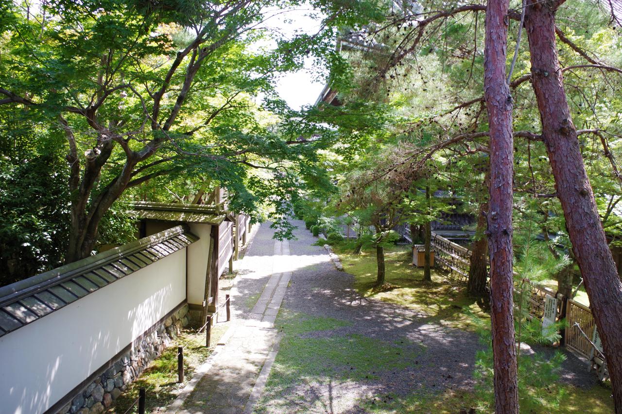 清涼寺の境内の道