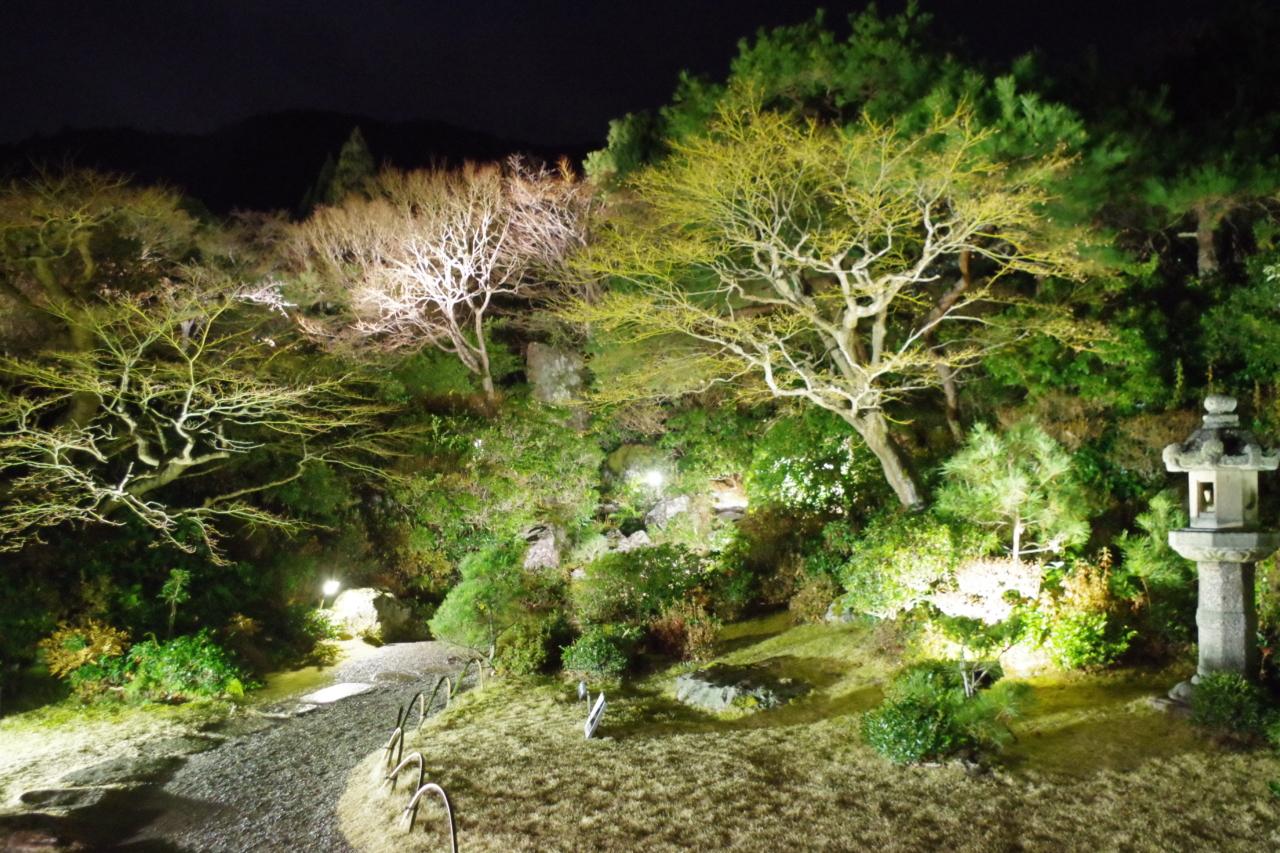 大河内山荘ライトアップ