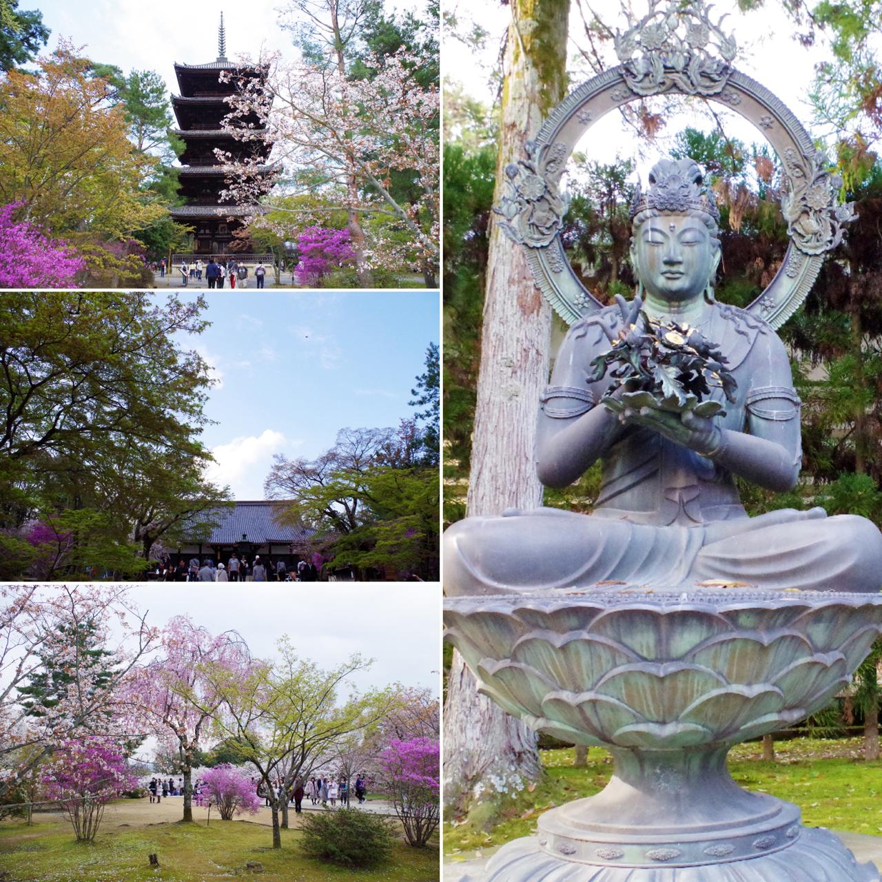 仁和寺の見どころ