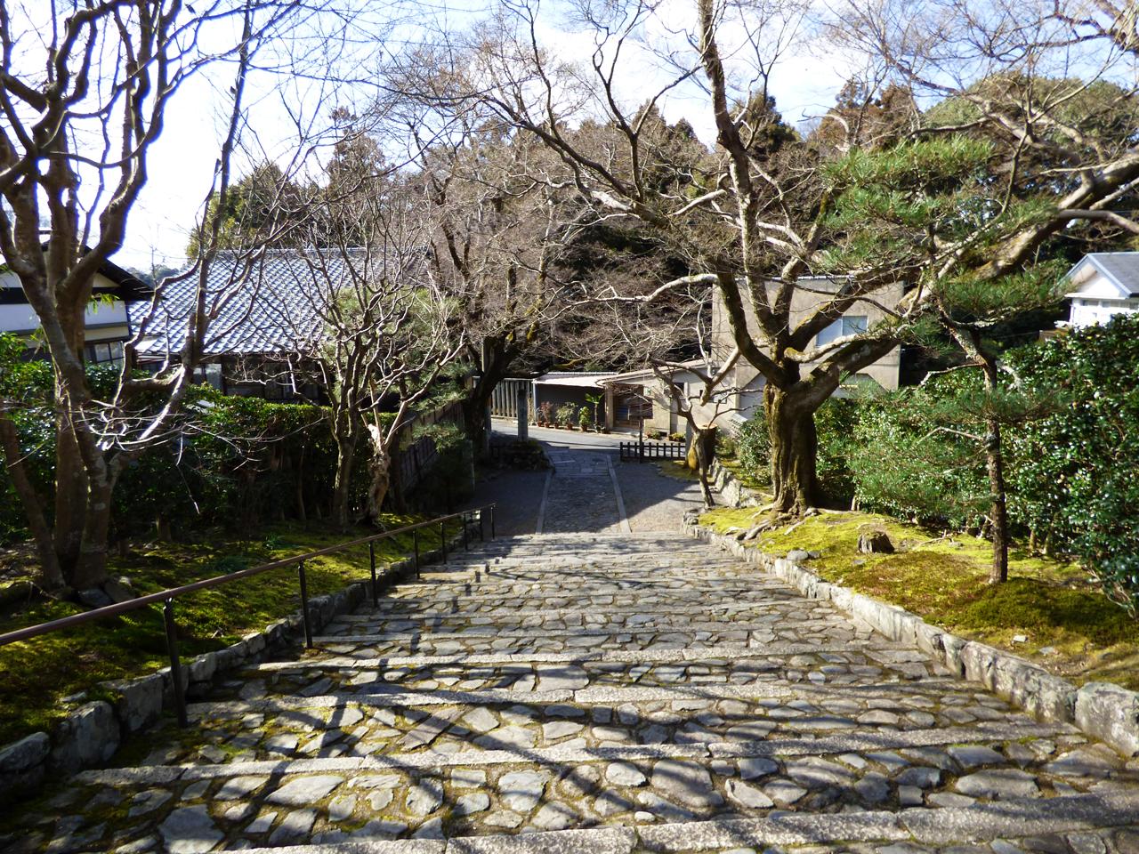安楽寺の参道