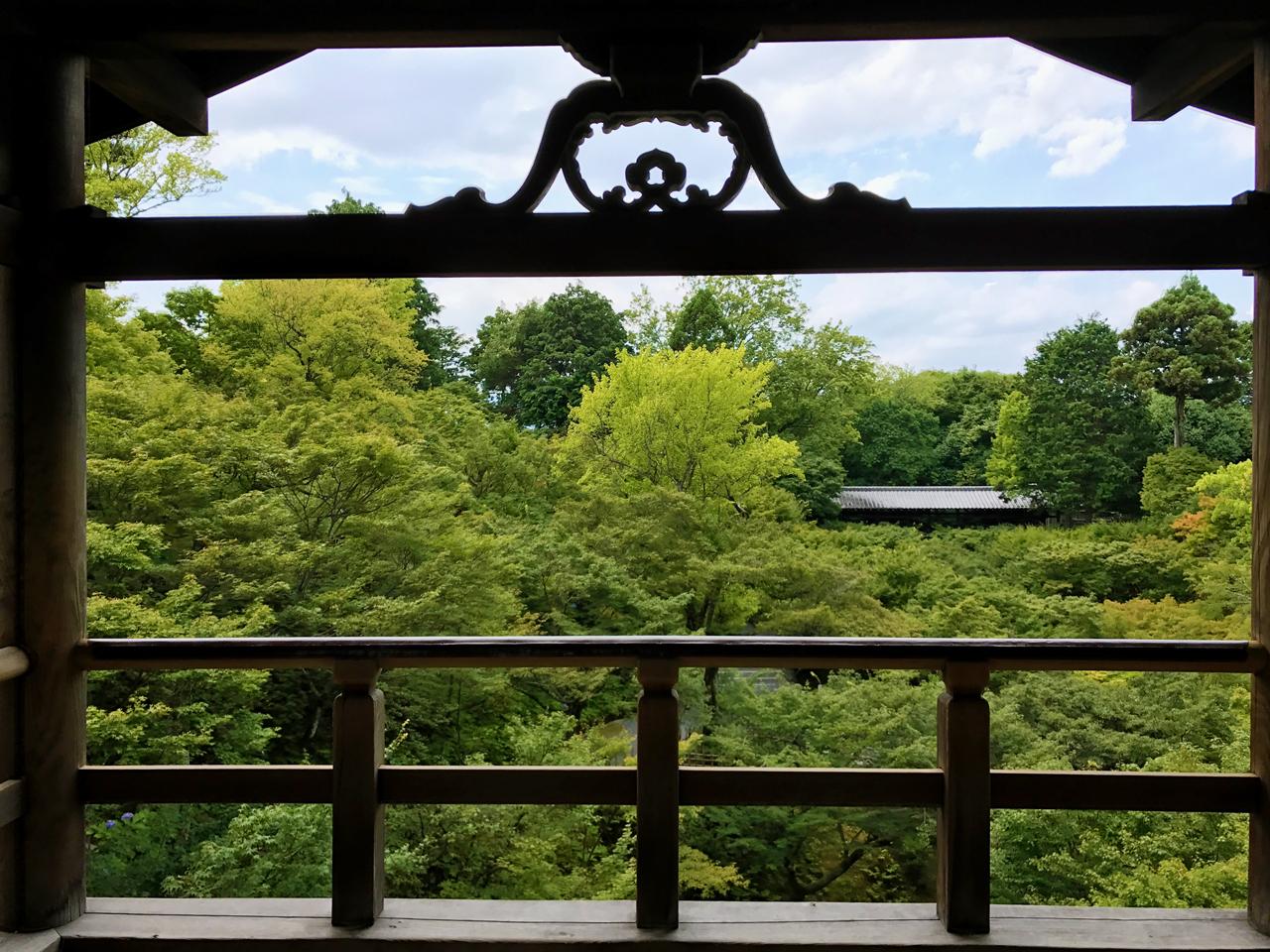 東福寺の通天橋からの風景