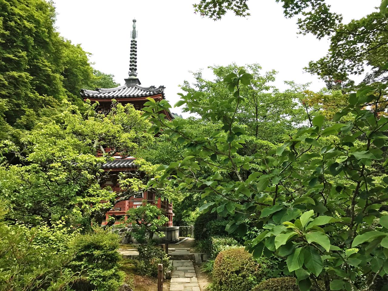 三室戸寺の三重塔