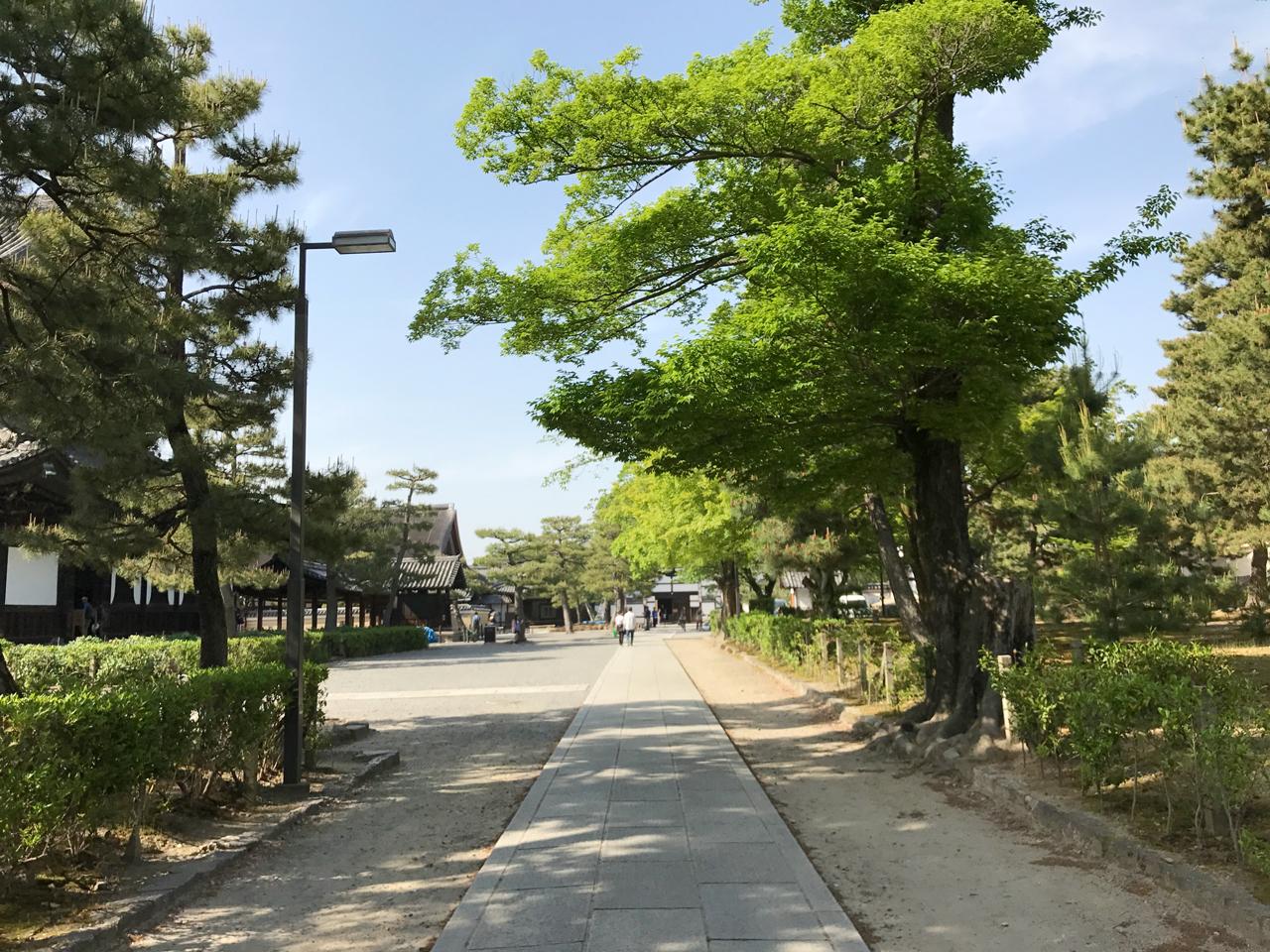 建仁寺の境内通路