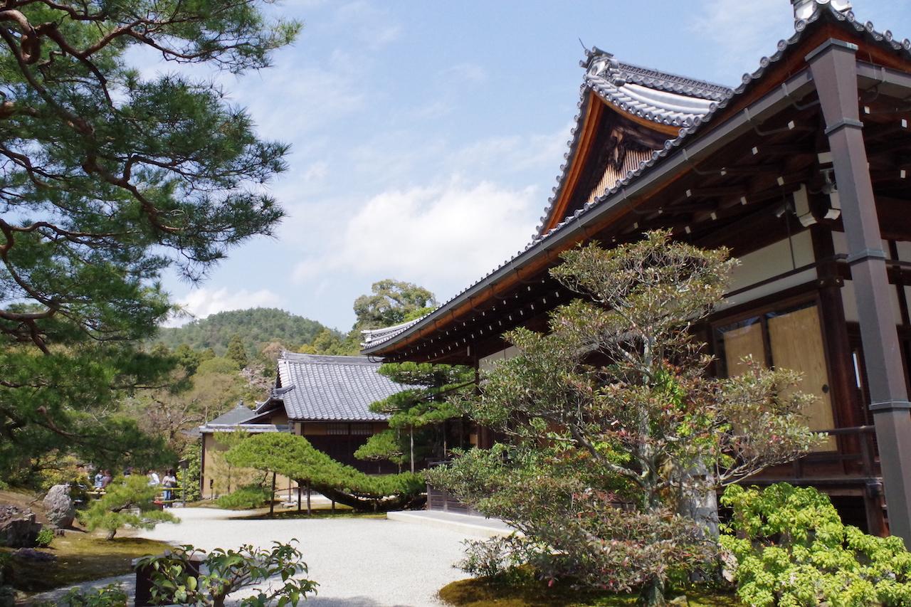 金閣寺の陸舟の松