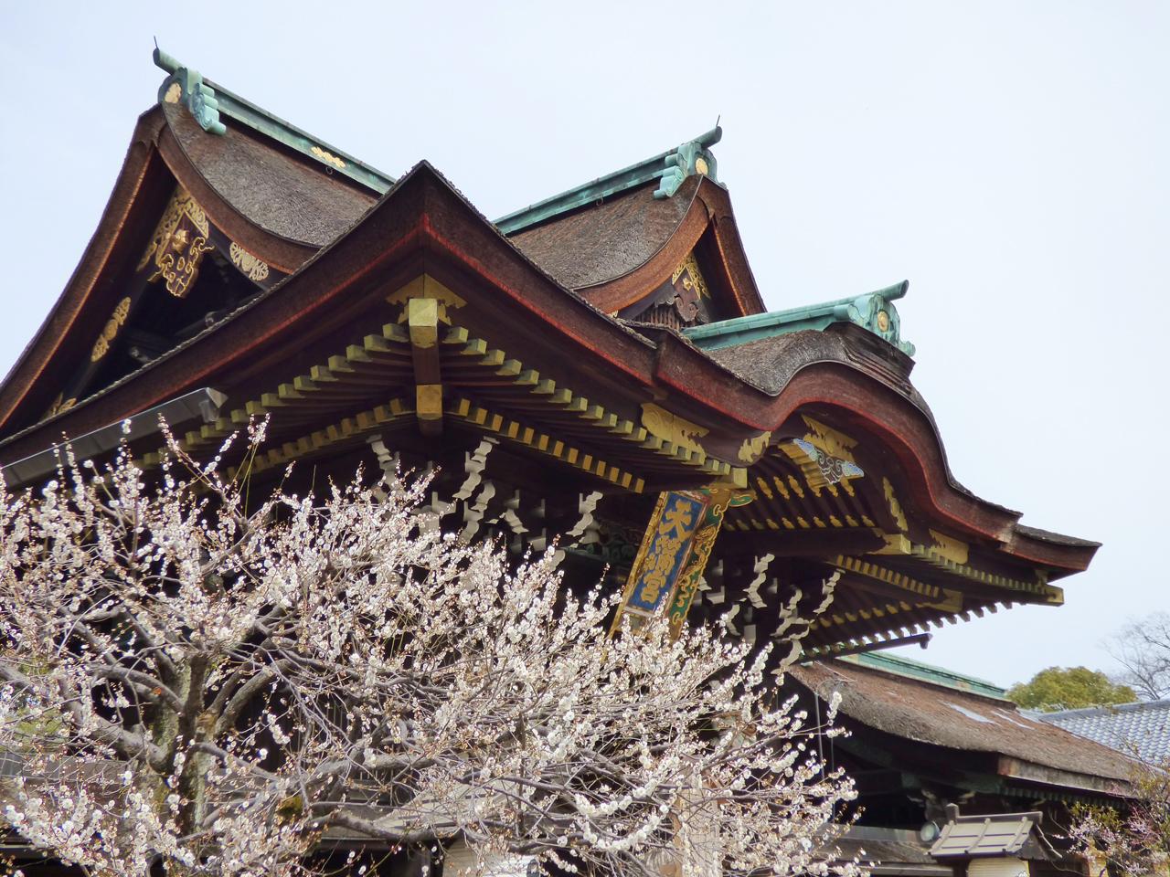 北野天満宮の桜と三光門